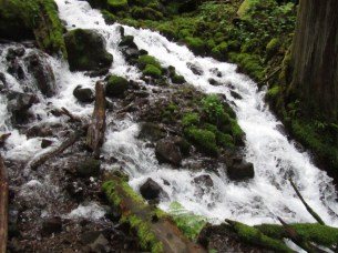 Many place to view and photograph Wahkeena Creek.