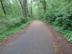 The trail starts out as asphalt. Pretty much a walk in the words in second growth timber.