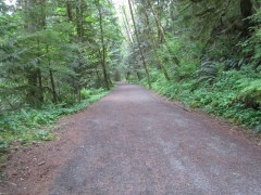 The trail changes from asphalt to fine gravel after a mile.
