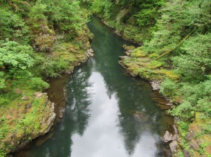 The view down from the bridge to the Lewis River.