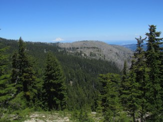 As we started to get above timberline we had a view of Mt. Hood and the old Gnarl Ridge fire area.