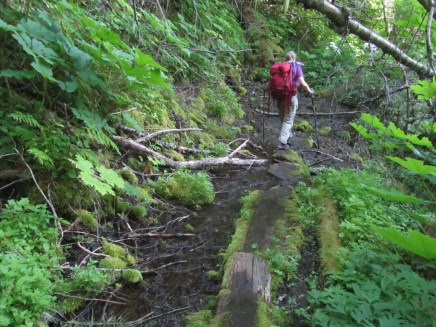 The little creek starts a spring and trail crosses over the source.