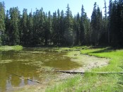 Unnamed lake along the trail.