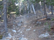 At the top of the trail it turns rocky.