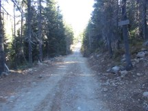 The trail feeds out on the road to Bonney Meadows Camp.