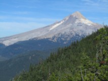 Nice view of Mt. Hood from Bonney Butte.