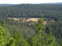 A nice view of Bonney Meadows from the top of Bonney Butte.