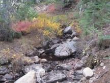 Bonney Meadow Creek