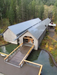 The Forest Center viewed from the top of the fire lookout tower.
