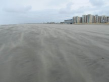 The wind was blowing the sand around on the beach.