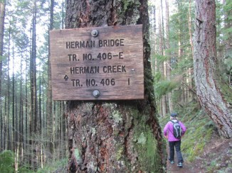 We turn off the PCT and back on to Herman Bridge Trail and head for home.