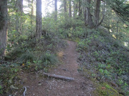 Lower trail sections