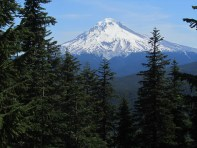 View of Mt. Hood from the fire lookout.