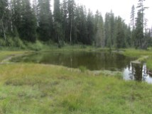 We pressed on past Lake of the Ancestors and found a new pond and meadow.