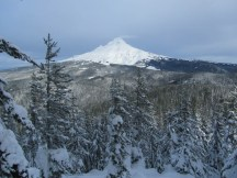 Mt. Hood from the first view spot.