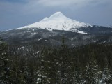 Final look at Mt. Hood. The snow was already melting of the trees.