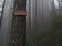 Someone made some new trail signs.