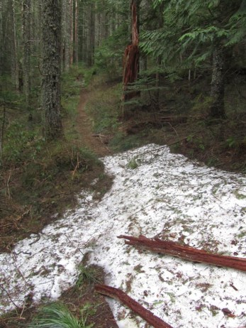 3400 ft. and had patches of snow still on the trail.
