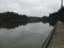 Looking down the Willamette River.