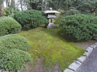 JapaneseGarden_IMG_4763
