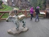 Zoo_DSCF1446