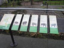 Zoo_DSCF1512
