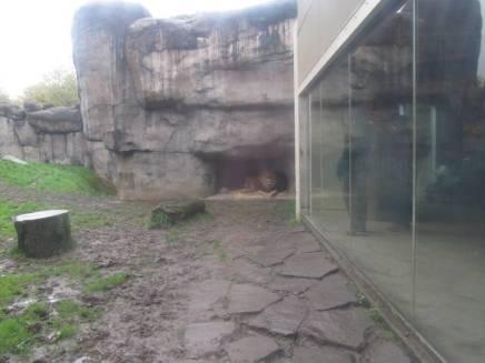Zoo_IMG_4921