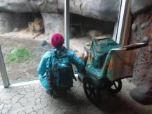 Zoo_IMG_4924