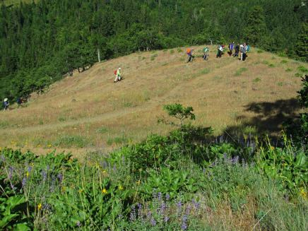 A Mazama hike group with played tag with on the hike.