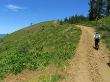 Following the road up the top of Bald Mt.