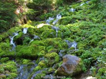 TimberlineTrail_IMG_9525