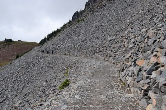This section of the trail was cut into a talus slop. It would have taken an incredible number of CCC man hours to build this.