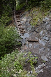 I have never seen a log staircase like this on a trail before.