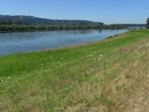 View of Columbia River from the Wildlife Refuge