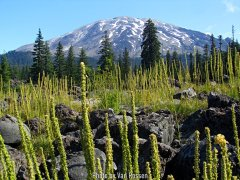 ButteCamp_IMG_3356