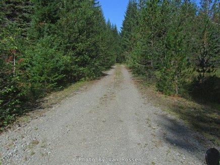Main Gravel Road