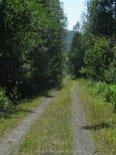 One type of Gravel Road