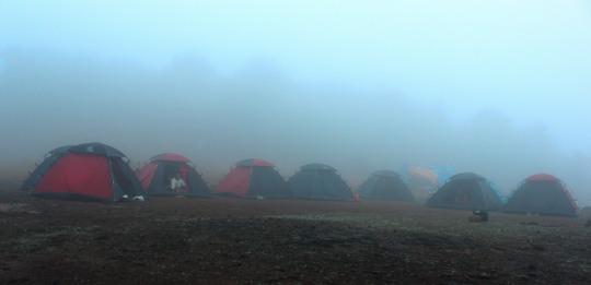 Misty Camp Site