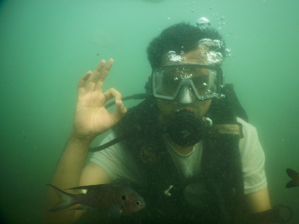 Diving with fishes