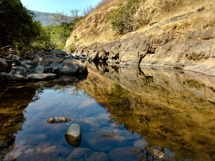 While the river was dry, we occasionally found pools of water