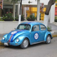 Blue Herby