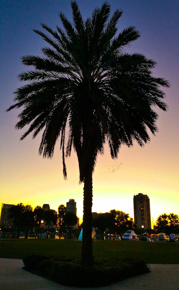St Petersburg Sunset