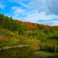 Vermont Fall Color