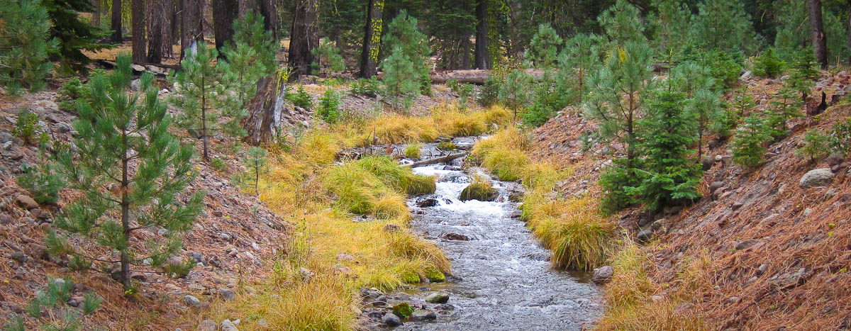 Campground Creek