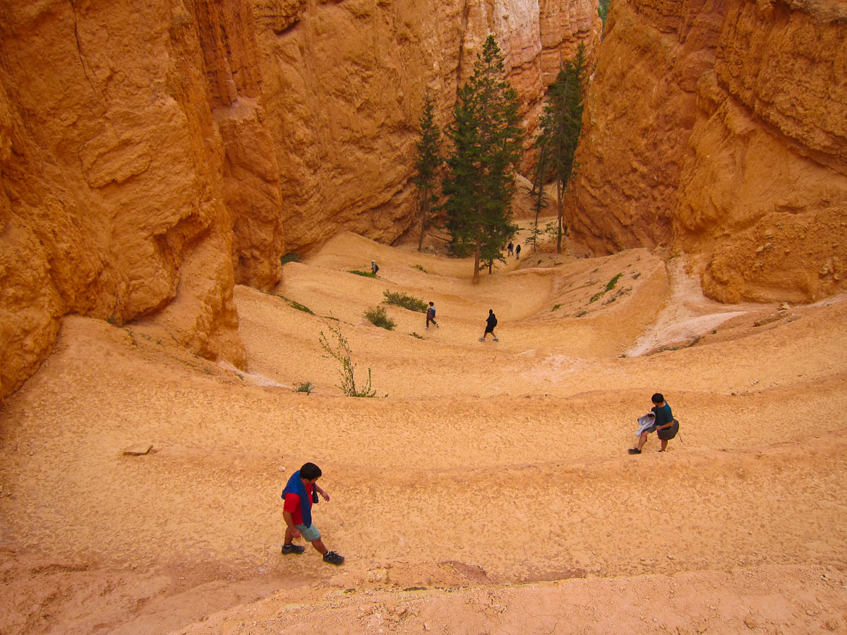 Tight switchbacks on the way down Navajo Trail