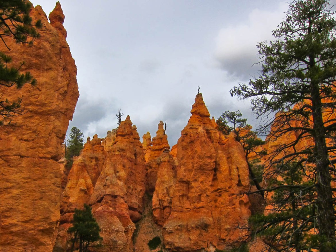 Looking up at wizard-capped hoodoos