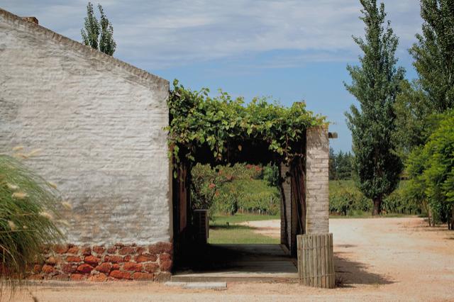 4 Juanico Winery - By Tiffany Clapp.jpg