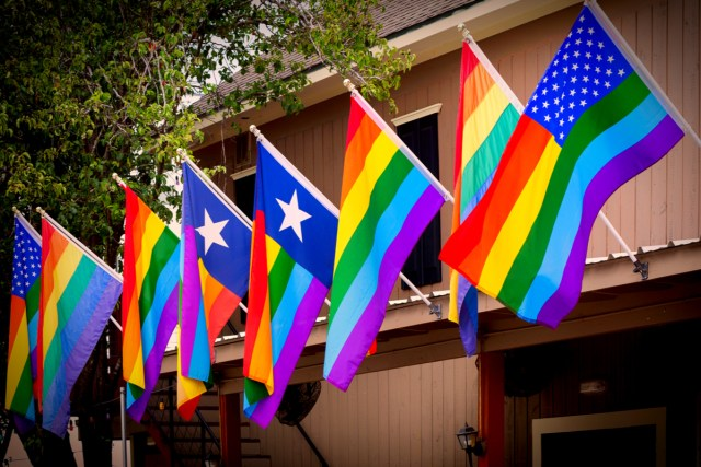 Houston LGBT Pride Celebration By michelmond Shutterstock.jpg