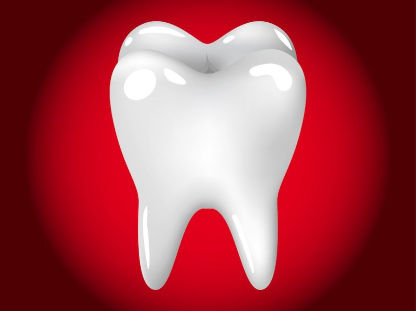 Call South Boston Tremont Dental For An Appointment located in Massachusetts