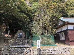 諭鶴羽神社 010